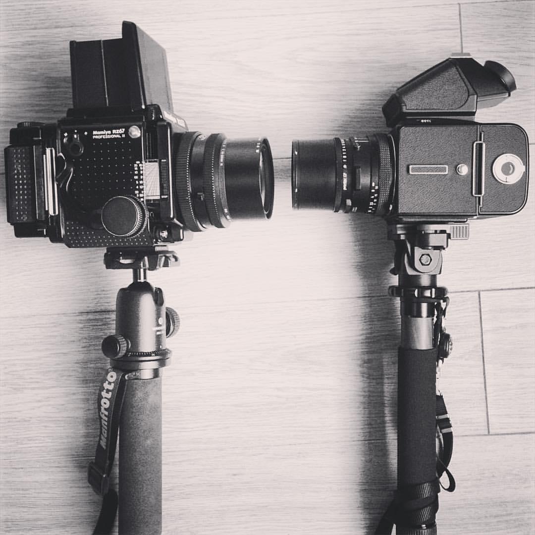 Hasselblad vs Mamiya RZ67 (6×6 vs 6×7 Cameras)