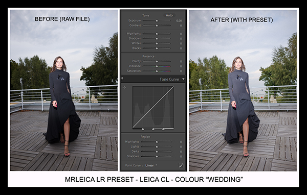 Leica Lightroom Presets - Colour